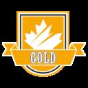 MPHL Gold Team